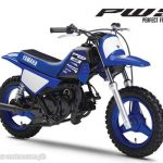 SMALL YET LOVED BY ALL THE YAMAHA PW50 IS HERE  The fun and excitement of riding…